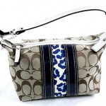 Win a Free Coach Purse, Ends March 11