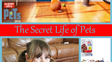 The Secret Life of Pets Toy Review