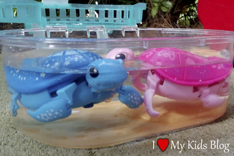 Eliminate the Stress and Mess of Pets with Little Live Pets Turtles